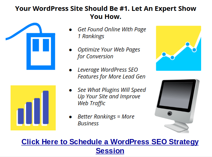 wordpress seo expert, consultant, trainer